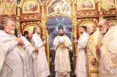 Різдвяний візит архіпастиря у Андрушівське благочиння: літургія та благодійний вечір колядок!